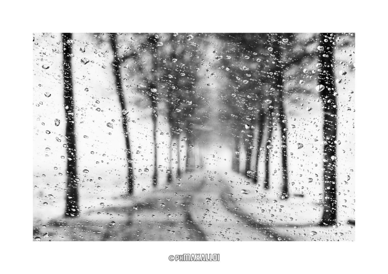 Neve 01