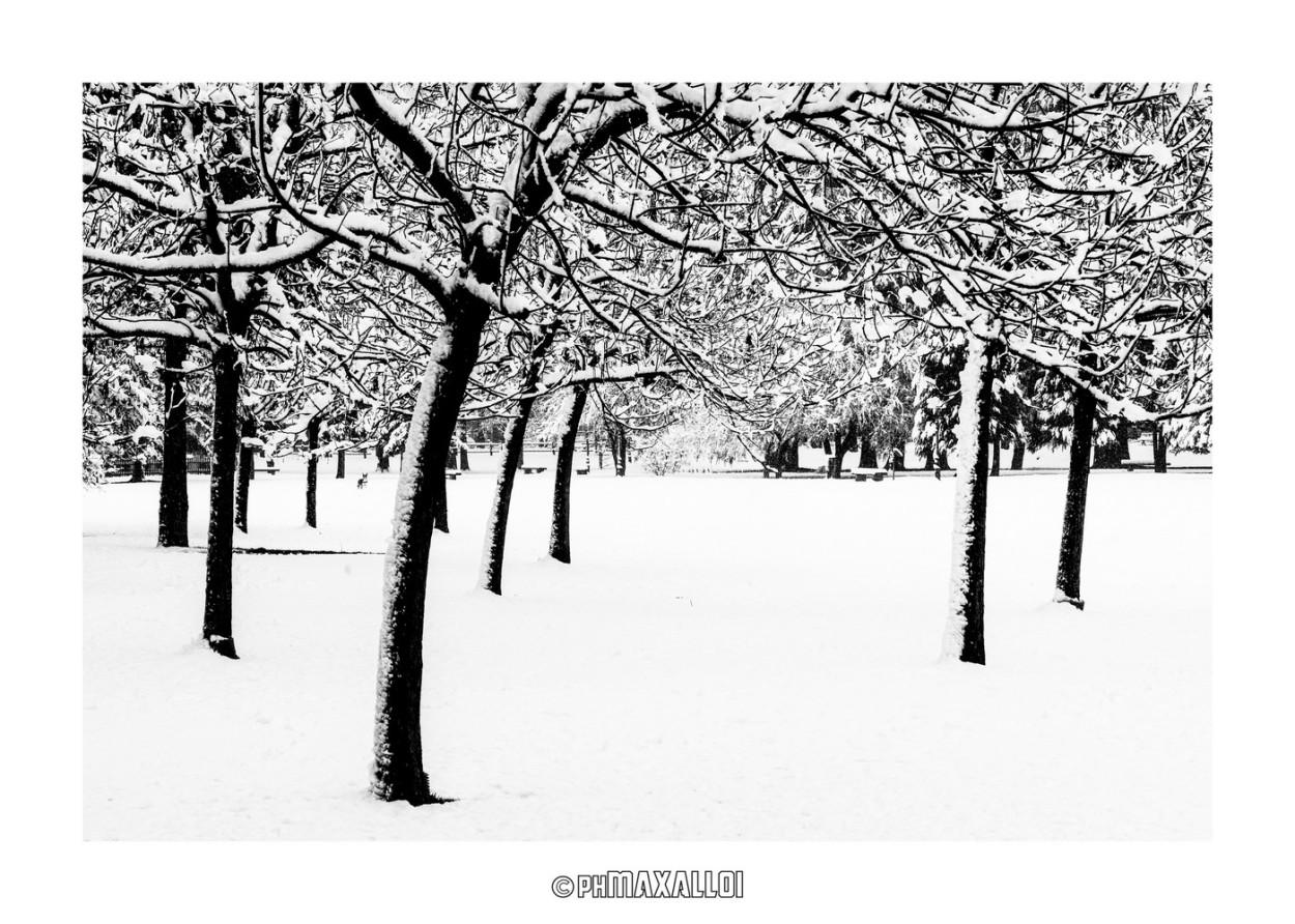Neve 02