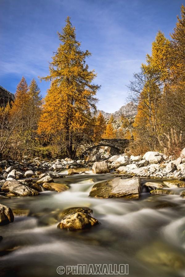 Un proverbio cinese diceva di sedersi in riva al fiume, che prima o poi il cadavere del nemico sarebbe passato. A me basta sedermi in riva al fiume...